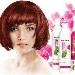 Список лучших профессиональных шампуней для окрашенных волос