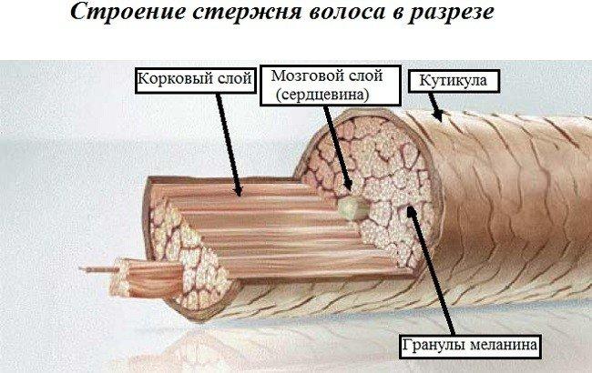 uvlazhnyayushchie-masla-i-maski-dlya-volos3