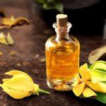 Применение эфирного масла иланг-иланг